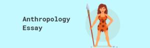 "Anthropology Essay: Writing an ""A"" Grade Essay"