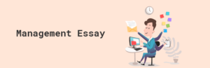 Management Essay: Writing a Top-Notch Essay